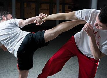 Kung Fu – Wing Chun